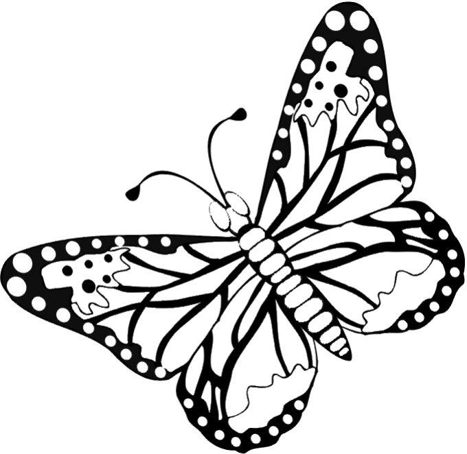 www.preschoolcoloringbook.com / Butterfly & Moths Coloring ...