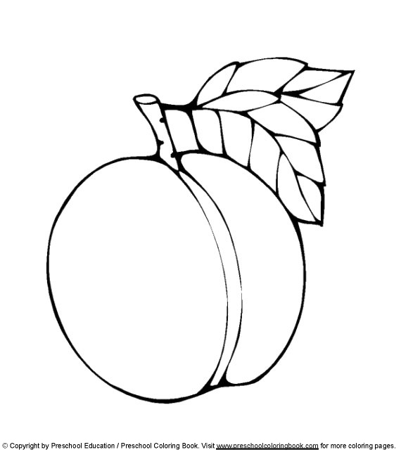 peach printable coloring pages - photo#30